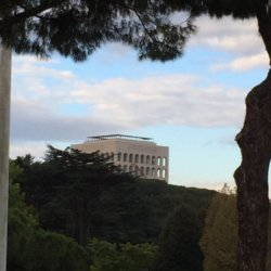 viewbox vendi rome italy (8)